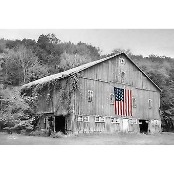 Patriótico de la granja II cartel imprimir por Lori Deiter (18 x 12)