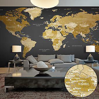 Papier peint XXL - World Map: Modern Geography II