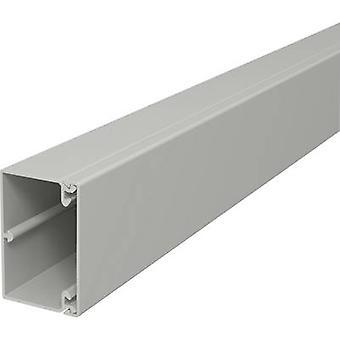 OBO Bettermann 6189601 Cable duct (L x W x H) 2000 x 60 x 40 mm 2 m Grey