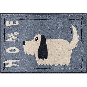 Alfombra lavable del hogar 50 x 75 cm estilo doggy lavar + secar