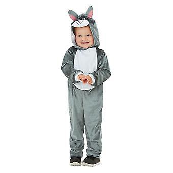 Småbarn søte grå Bunny kanin Fancy kjole kostyme