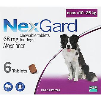 Nexgard for Dogs 10-25kg (24-60 lbs) 6 Chewables