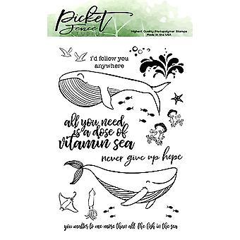 Picket Fence Studios een dosis vitamine zee duidelijke postzegels