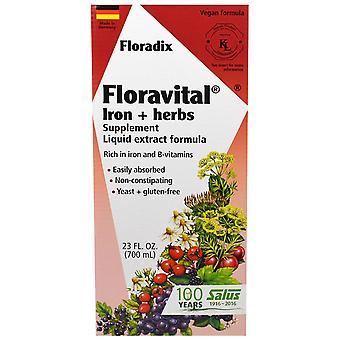 Flora, Floradix, Floravital, Supplément de fer + herbes, Formule d'extrait liquide, 23