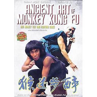 Arte antiguo de mono Kung Fu Película Dvd -Vd7584A