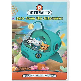 Here Come the Octonauts! [DVD] USA import