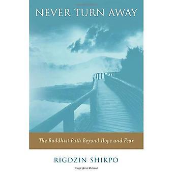 Aldrig slå bort: Den buddhistiska vägen bortom hopp och rädsla