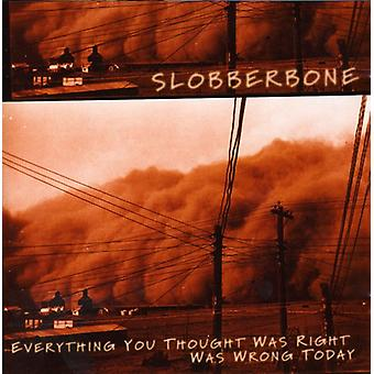 Slobberbone - Everything You Thought Was Rig [CD] USA import