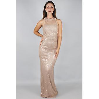 Zhaelle sequin netting column maxi dress