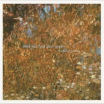Baird Sisters - Until You Find Your Green [CD] USA import