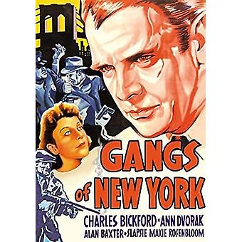 Gangs of New York [DVD] USA import