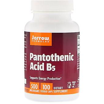 Jarrow Formulas, Pantothenic Acid B5, 500 mg, 100 Veggie Caps