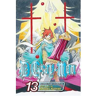 D. GrayMan, vol 13 (D. Gray-Man)