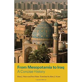 Z Mezopotamii do Iraku: Kariera