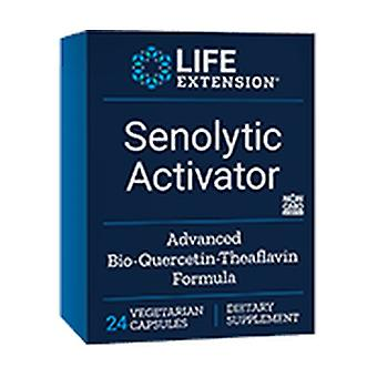 Senoly Activator 24 vegetable capsules