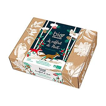 Christmas box 60 packets
