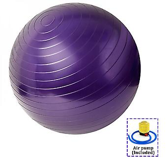 Exercise Fitness Ball Yoga Swiss Ball With Hand Pump For Home And Gym 65cm