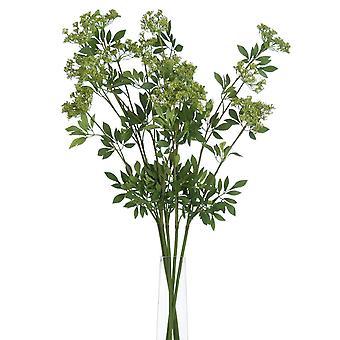 Fresh cut flowers faux ammi
