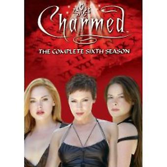 Encantada - encantado: Temporada 6 importación de Estados Unidos [DVD]
