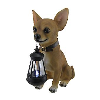 Lille lys Keeper Chihuahua Statue og LED lanterne