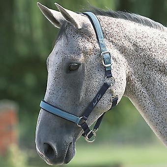 Mark Todd Deluxe Padded Headcollar With Lead Rope
