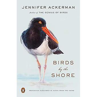 Fugler ved kysten: observere det naturlige livet av Atlanterhavskysten