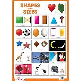 Shapes & Sizes by Pegasus - 9788131930472 Book