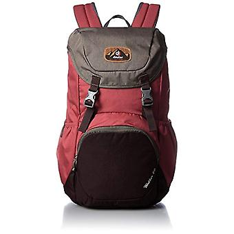 Deuter Walker 20 - Unisex Adult Backpacks - Red (Cranberry/Aubergine) - 24x36x45 cm (W x H L)