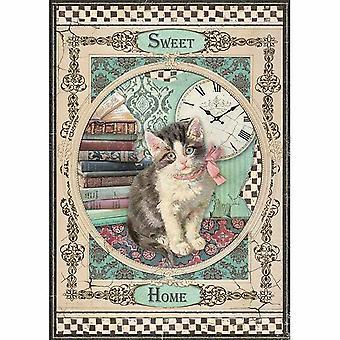 ستامبريا رايس ورقة A4 الحلو القط المنزل