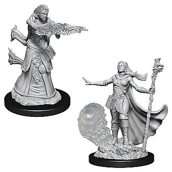 D&D Nolzur's Marvelous Unaplicted Minis Female Human Wizard