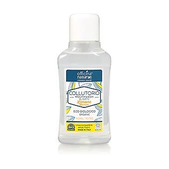 Sitruunan suuvesi 250 ml (sitruuna)