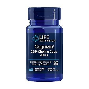 Cognizin CDP-Choline 60 vegetable capsules of 250mg