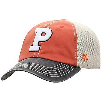 Princeton Tigers NCAA BLÅR Off Road Snapback Hat