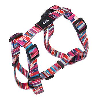 Bull Arnes Fashion T-3 (Dogs , Collars, Leads and Harnesses , Harnesses)