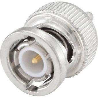 Rosenberger 51S107-803N5 BNC connector Plug, straight 50 Ω 1 pc(s)