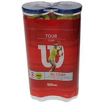 Wilson Unisex Federer Tennis Balls