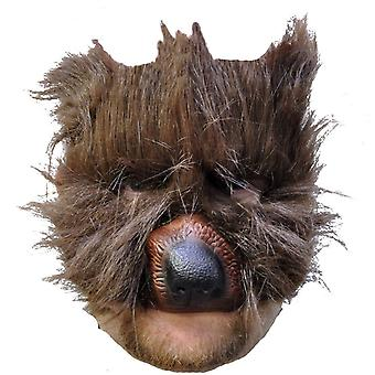 Bære Plys maske For voksne