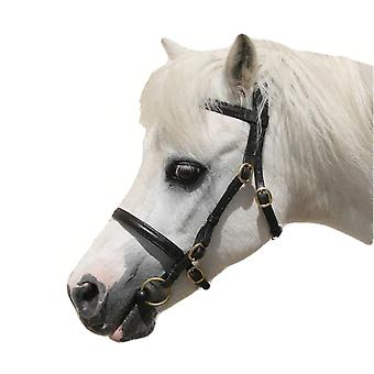 Oakfield In Hand Bridles