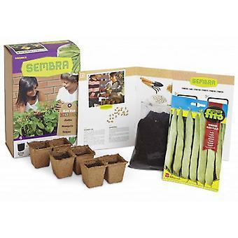 Semillas Fitó Kid planting beans (Garden , Others)