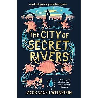City of Secret Rivers van Jacob Sager Weinstein