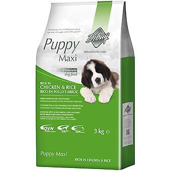 Dibaq Trockenfutter für Hunde Dnm Puppy Maxi  (Hunde , Hundefutter , Trockenfutter)