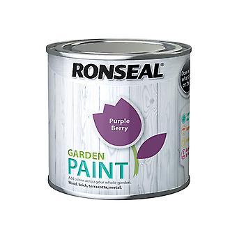 Ronseal Garden Paint Purple Berry 250ml RSLGPPB250