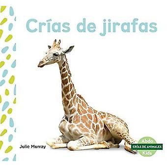 Crias de jirafas Giraffe Kalvar av Julie Murray