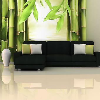 Tapet - Bambus og zen