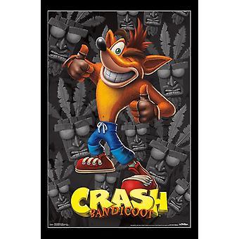 Crash Bandicoot - accidente Poster Print