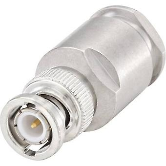 Rosenberger 51S105-015N5 BNC connector Plug, straight 50 Ω 1 pc(s)