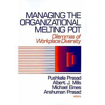 Gestione organizzativa Melting Pot dilemmi della diversità Workplase di Prasad & perrotto