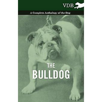 The Bulldog  A Complete Anthology of the Dog by Various