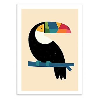 Art-Poster - Rainbow Toucan - Andy Westface 50 x 70 cm