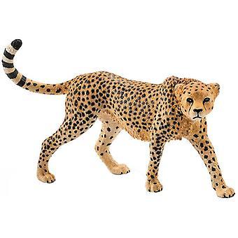 Schleich, Cheetah